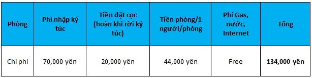 truong-van-hoa-quoc-te-osaka02