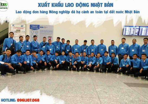 88-lao-dong-do-hang-nong-nghiep-da-ha-canh-an-toan-tai-dat-nuoc-nhat-ban