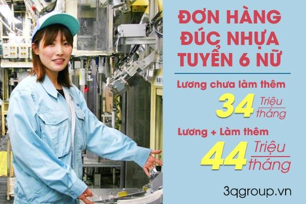 don-hang-duc-nhua-xkld-nhat-ban