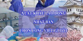 xuat-khau-lao-dong-nhat-ban-nen-chon-cong-viec-gi-tot
